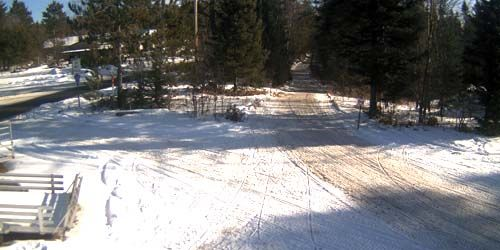 Forest trail for snowmobiling and ATV riding -  live webcam , Wisconsin Land O' Lakes