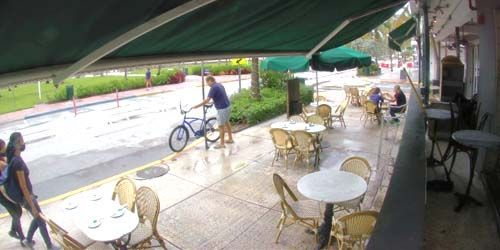 Street Cafe -  live webcam , Florida Miami