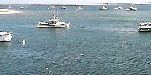 Autd Lydias corte -  Webcam , Massachusetts Chatham