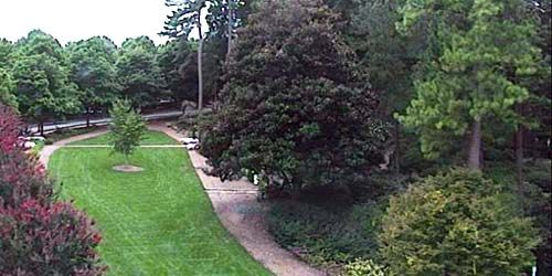 WRAL Azalea Garden -  Webcam , North Carolina Raleigh