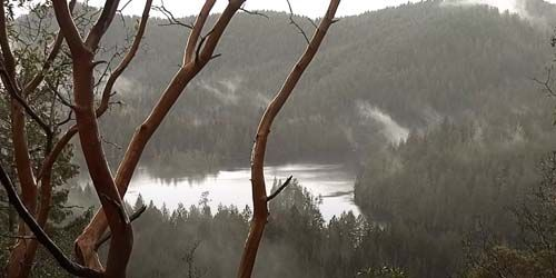 British Columbia nature -  live webcam , British Columbia Victoria