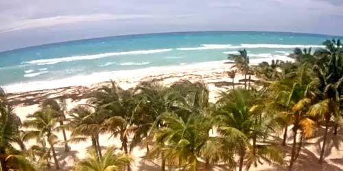 Beach with palm trees in the area of Playacar -  live webcam , Quintana Roo Playa del Carmen