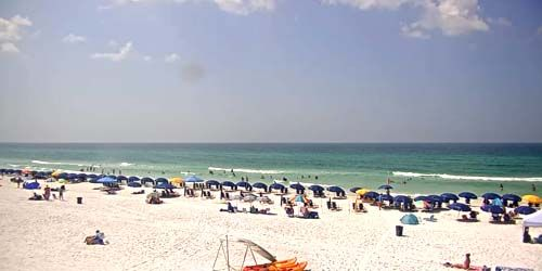 Playa de cola de ballena marina -  Webcam , Florida Destin